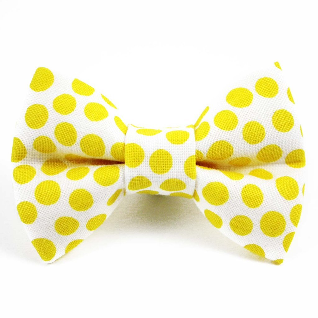 yellow polka dot cat bow tie