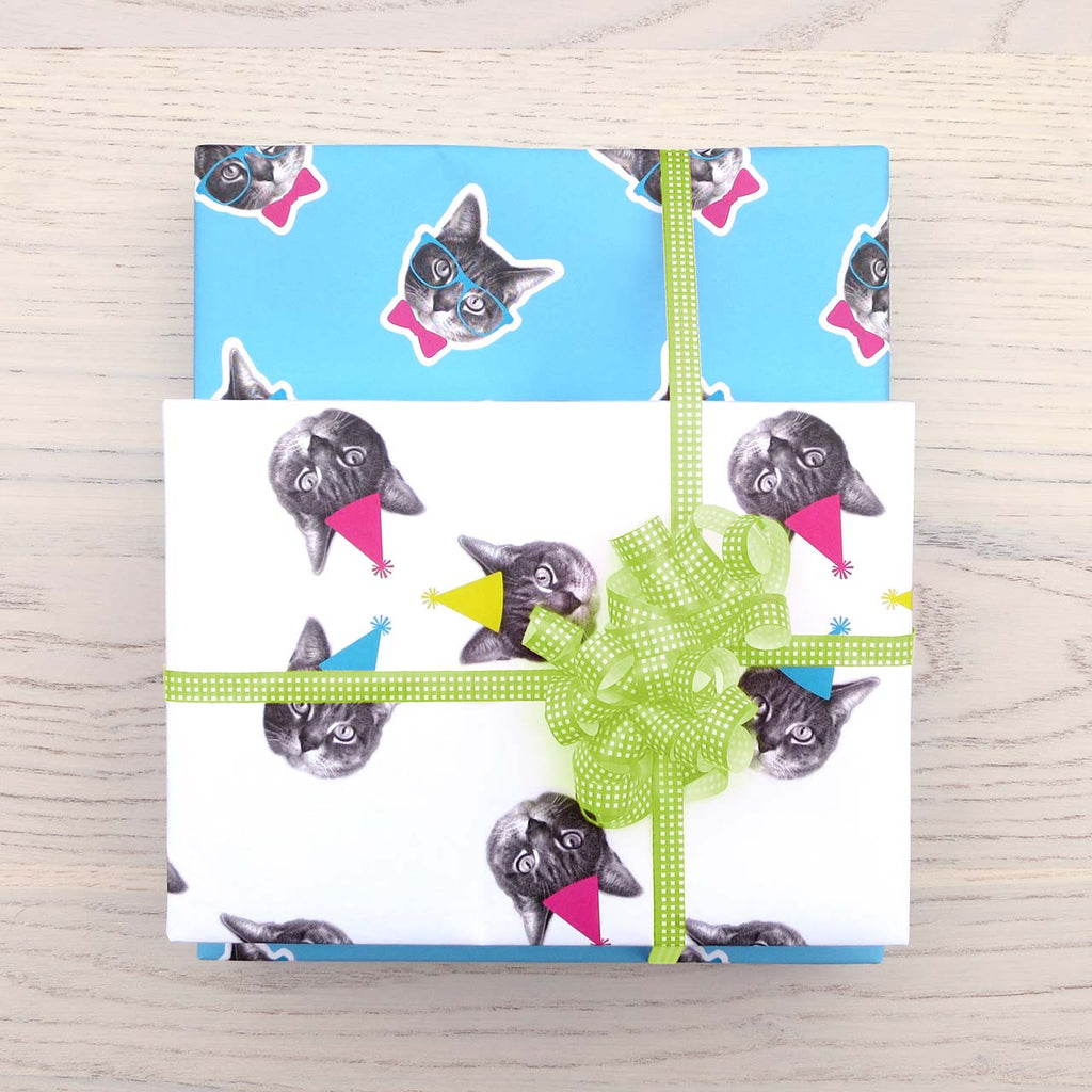 cat lover blue and white gift wrap