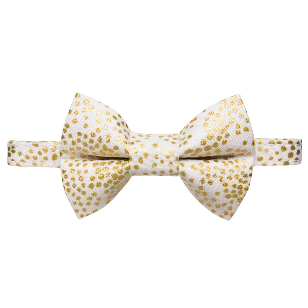 cat bow tie and collar gold