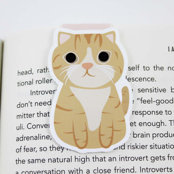 orange tabby jumbo cat bookmark