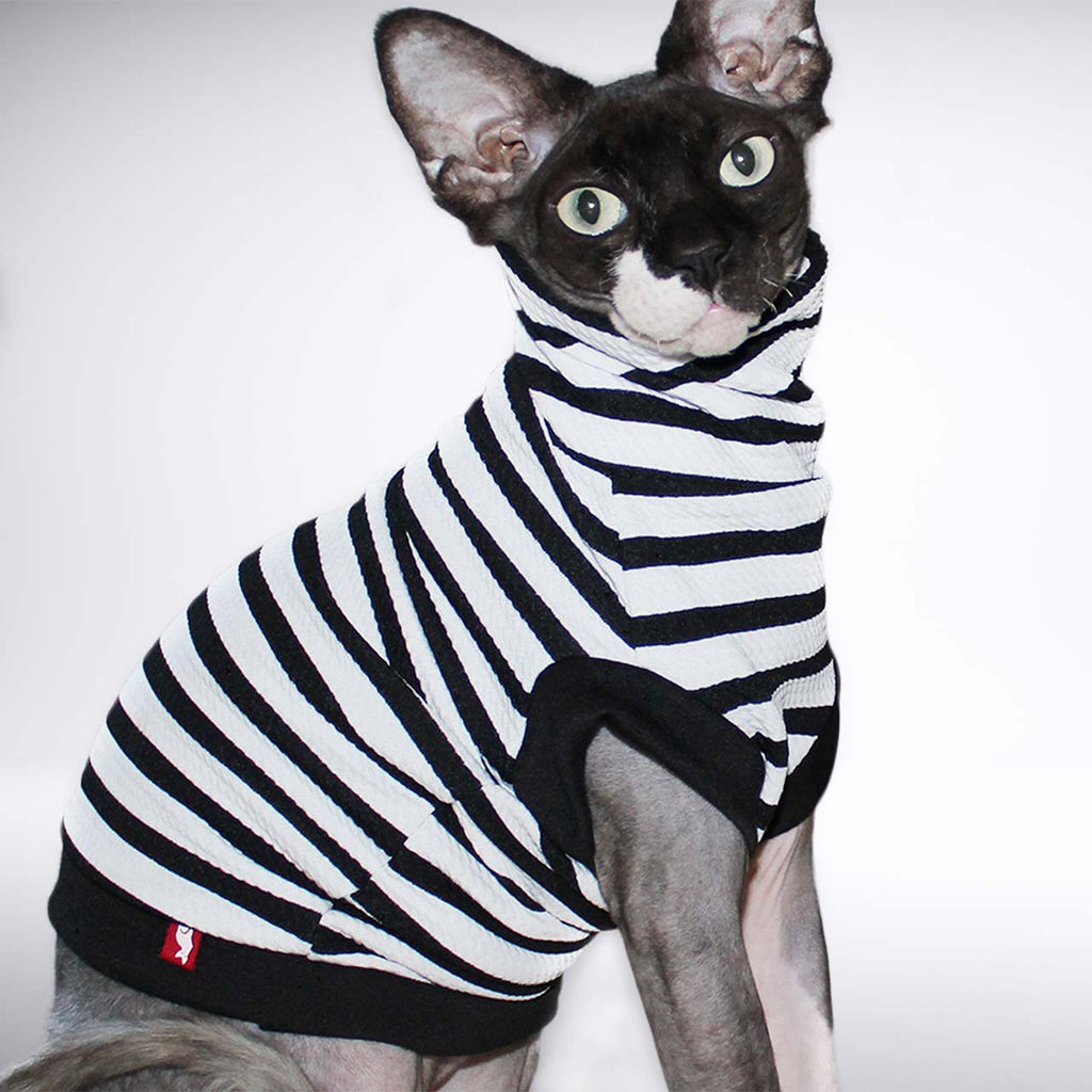 striped sphynx cat shirt