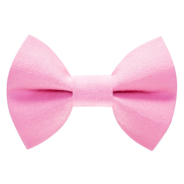 soft pink cat bow tie