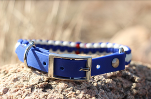 Adjustable Colorado Collar