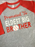 Big Brother Baseball Shirt, Promoted to Biggest Brother Shirt, Brother To Be Shirt, Brother Shirt - Purple Elephant STL