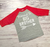 Biggest Brother and Big Brother Matching Shirts, Brother Baseball Shirts, Gender Reveal Shirts - Purple Elephant STL