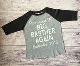 Big Brother Again Shirt, Promoted To Big Brother Shirt, Big Brother Shirt, Brother Shirt - Purple Elephant STL
