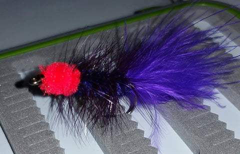 Egg Sucking Leech - Purple/Black/Red UV #6 - Fisherman's Edge