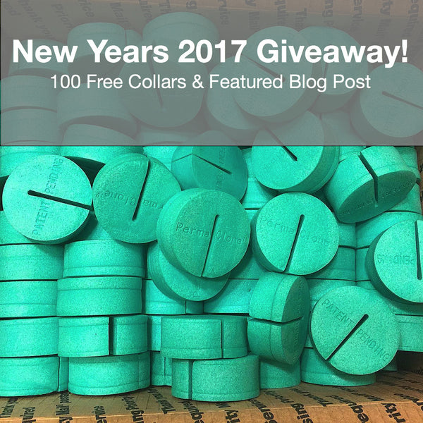 Enter to Win 100 Free PermaClone Collars!