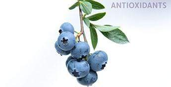 Explaining Antioxidants