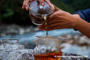 How to Find Happiness From Tea?