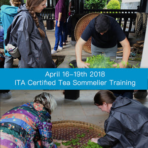 April 2018 ITA Certified Tea Sommelier Certification Training in Puer Yunnan, China