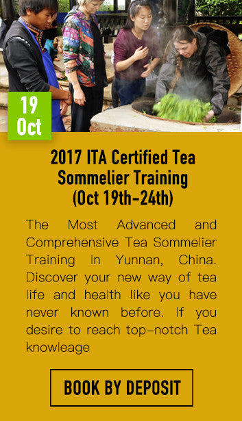 2017 ITA Certified Tea Sommelier Training Book by Deposit