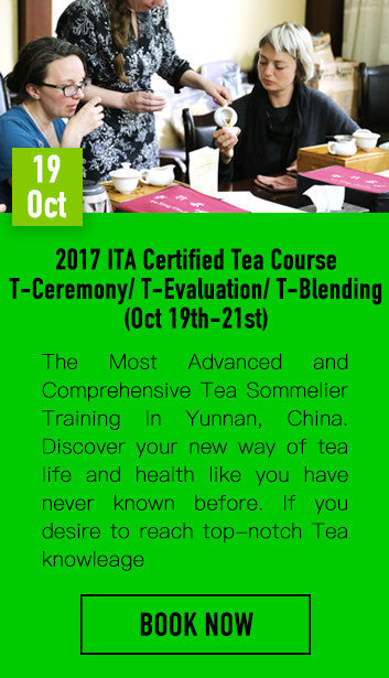 2017 ITA Certified Tea Course (T-Ceremony / T-Evaluation / T-Blending)
