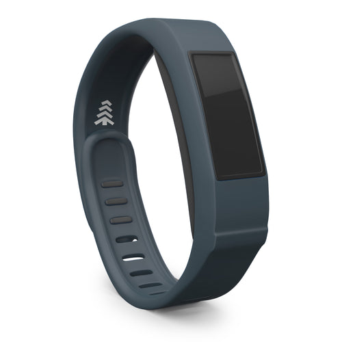 Garmin Vivofit 2 Band - Slate, Large Size.