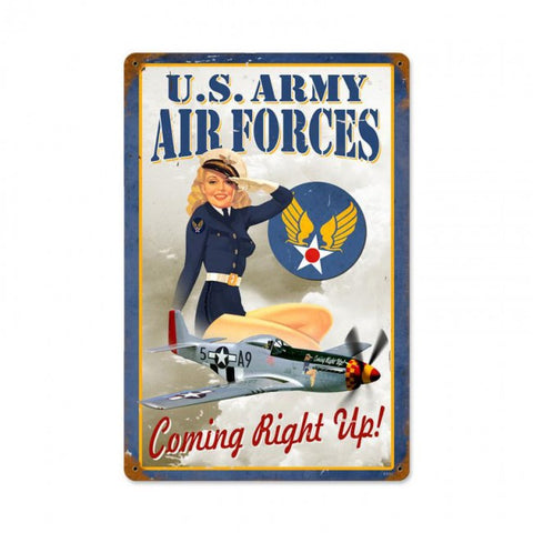 Air Forces Pin Up Tin Sign