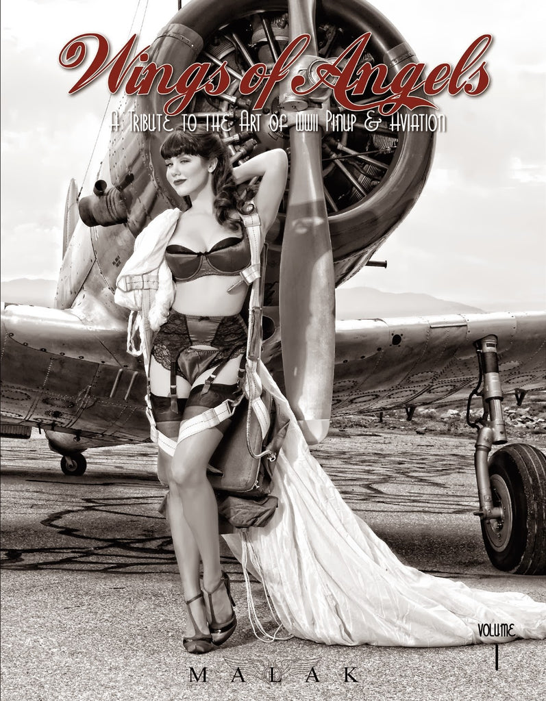 Wings of Angels Volume 1 Book