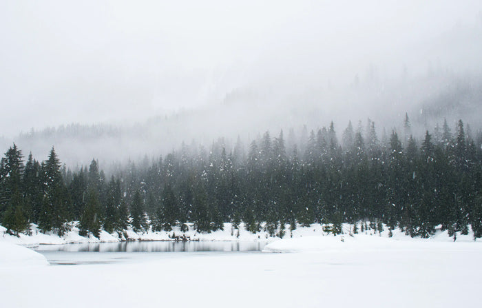 snow falling over a foggy, wooded lake