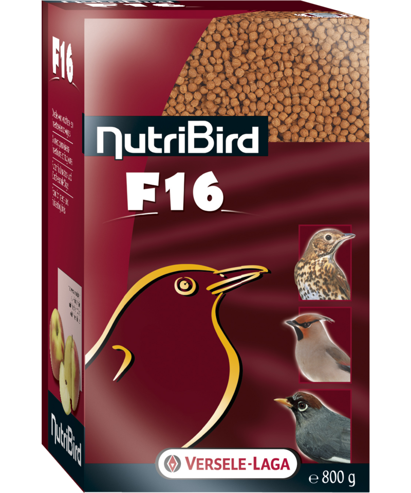 VERSELE-LAGA NutriBird F16 (800g / For fruit doves, trush- and jay-like birds)