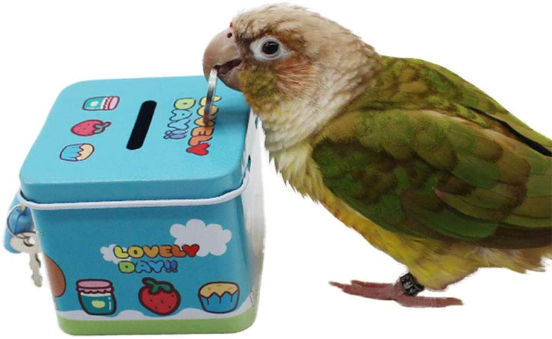 FIDS-PLAY TRAINING (Coin Bank)