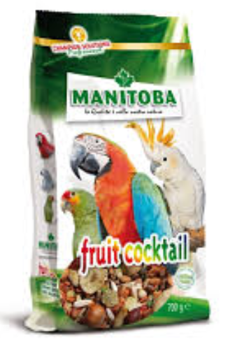MANITOBA Fruit Cocktail (700g)