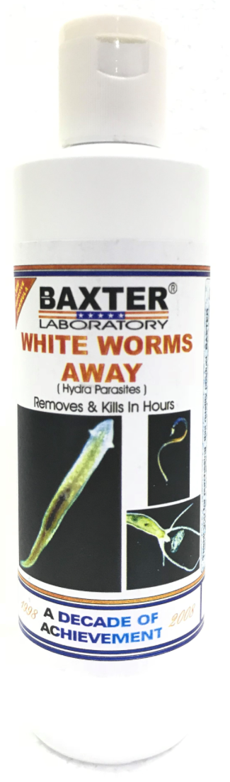 BAXTER (AQUA) White Worms Away (Hydra Parasites)
