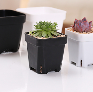GCS Square Pot (S / White / 6.5 x 6.5 x 6.5cm)