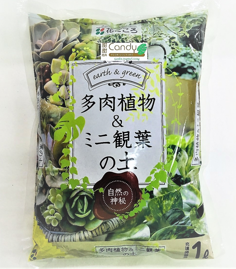 HANAGOKORO Succulent & Mini Foilage Potting Mix (1L)