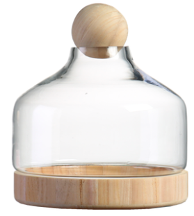 TERRA POTS Glass Jar w Wood Base Ball Top (30 x 28cm)