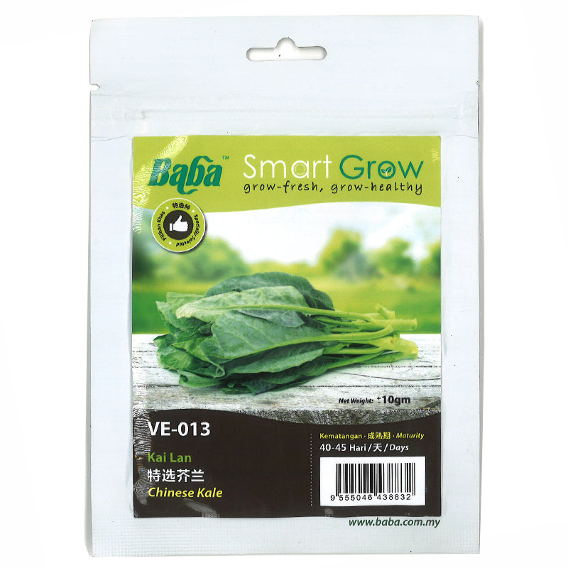 BABA Seed VE-013 Chinese Kale 芥兰