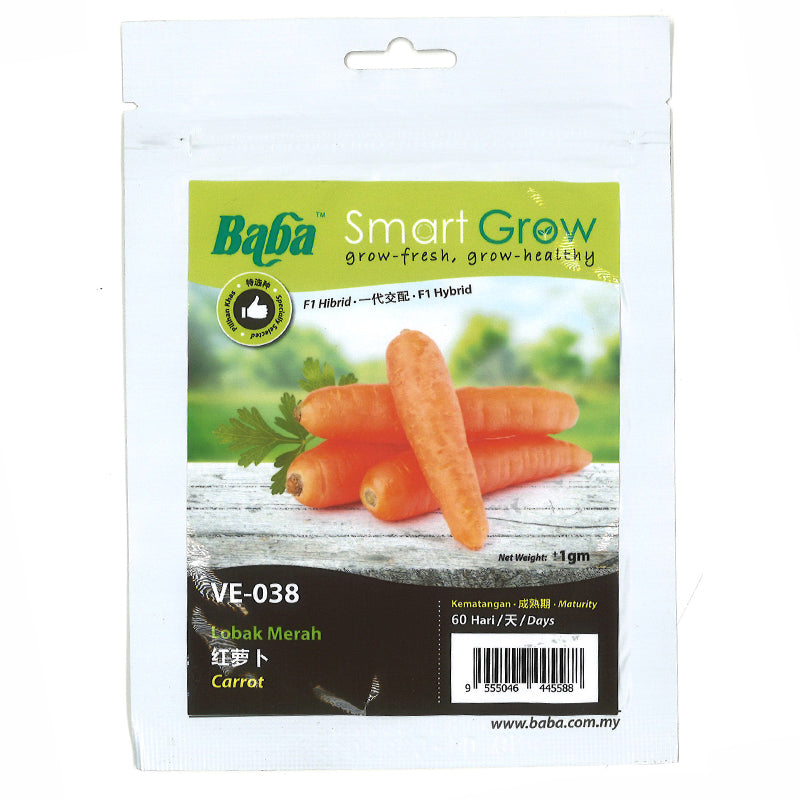 BABA Seed VE-038 Carrot 红萝卜