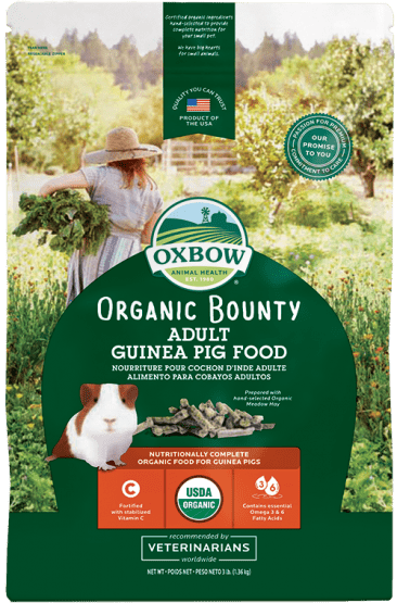 OXBOW Organic Bounty Adult Guinea Pig Food (3lb)