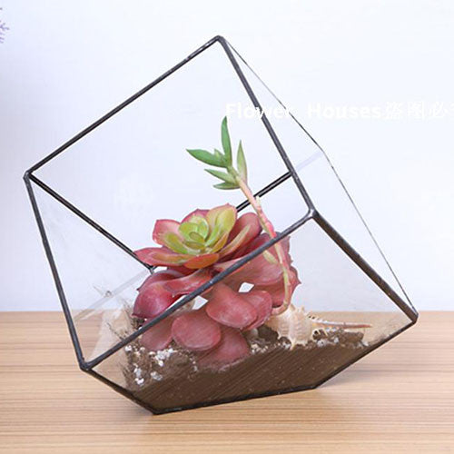 TERRA POTS Geometric Terrarium #1AS (Square Corner)