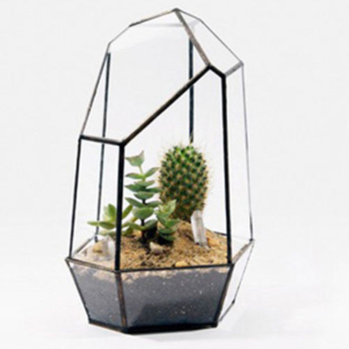 TERRA POTS Geometric Terrarium #10 (HexTower M no Door)