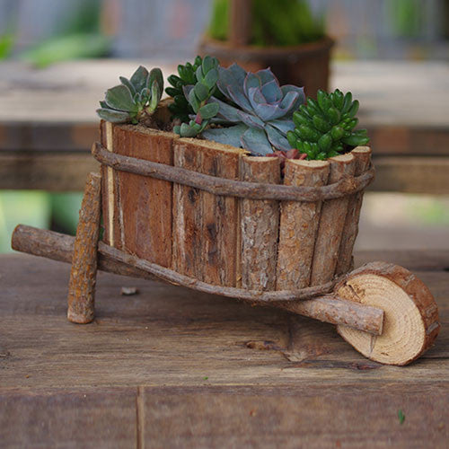 TERRA POTS Old Wooden Cart (Oval)