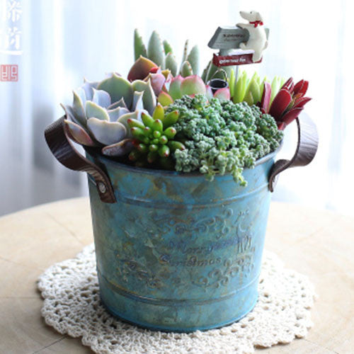 TERRA POTS Old Metal Bucket (Blue Pail)