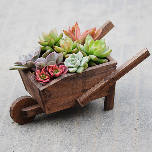 TERRA POTS Old Wooden Cart (Rectangle)