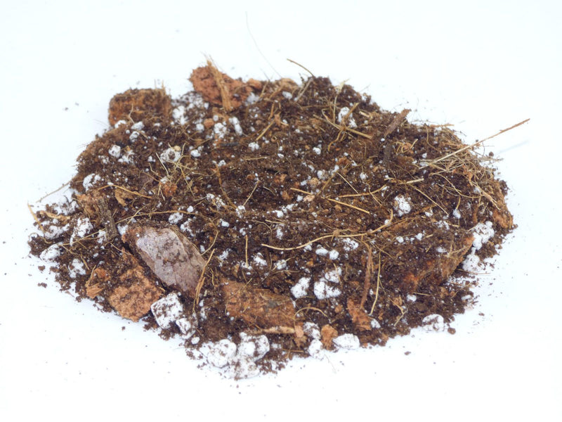 TERRA POTS Terrarium Soil Mix (500ml)