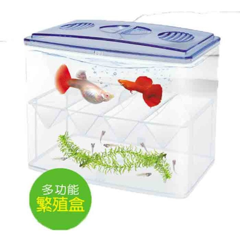 UP D-652 Breeder Box