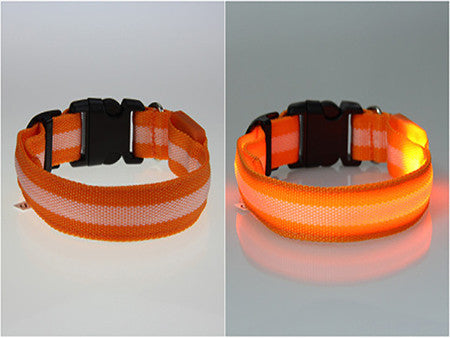 Glow LED Night Safety Cat Collars  - Flashing Light Up Nylon Collar
