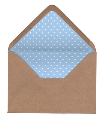 Butterfly Garden Envelope Liners