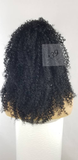 Vanessa kinky Curly Lace Front Wig