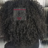 (Joann) kinky curly natural looking  lace front wig