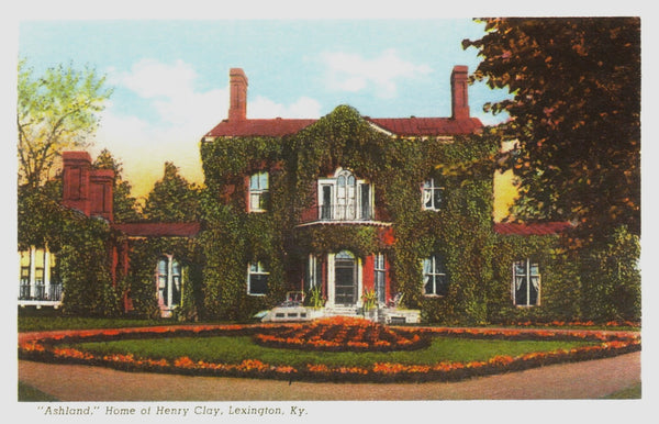 Henry Clay Home Postcard with Vines