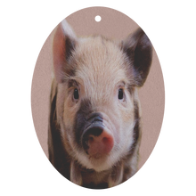 Load image into Gallery viewer, Bacon Jr. Fugly Freshener - The Fugly Mug Company