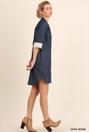 Addison Denim Dress