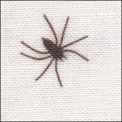 Black Spiders on White with Silver Shimmer 28ct Linen ~ Fabric Flair