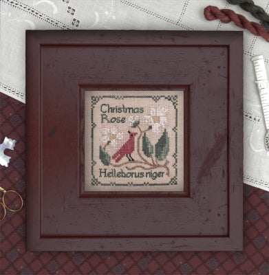 Christmas Rose - Botanical Stitches  ~ The Drawn Thread
