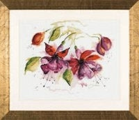 Fuchsia in Watercolor ~ Lanarte