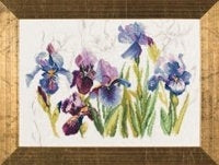 Blue Flowers Iris ~ Lanarte