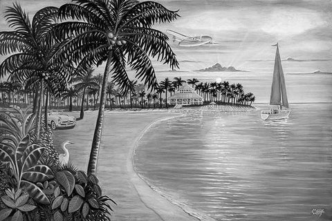 Tropic Cove Black & White Art: By Artist Mark Watts